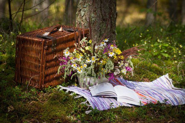 Picknick Cadeau Idee
